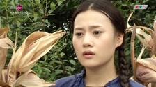Hoa Bay - Tập 8 Series