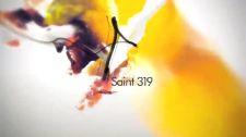 St.319 Step (Kara Dance Cover) St.319