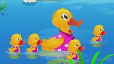 Bé Học Đánh Vần Five Little Ducks Toán Học Vui Cho Bé