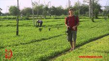 Khám Phá Việt Nam Cùng Robert Danhi Phú Yên - Vẻ Đẹp Hoang Sơ Của Biển Khám Phá Việt Nam Cùng Robert Danhi