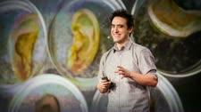 TED Talks Nhà Khoa Học Điên Rồ Này Tạo Ra Tai Người Từ Táo - Andrew Pelling Công Nghệ Sinh Học - Y Tế - Sức Khỏe
