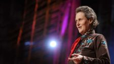 TED Talks Thế Giới Cần Đến Tất Cả Các Kiểu Trí Óc - Temple Grandin Trẻ Em - Giáo dục