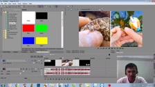 Thường Vĩ Hướng Dẫn Chia Đôi Màn Hình Trong Sony Vegas Dạy Cắt Ghép Video Free - Phần 2
