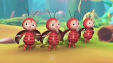 LalaTV Ladybug Hoạt Hình 3D