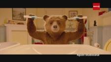 8 Xi-Nê Gấu Paddington Trở Lại Cùng Chuyến Phiêu Lưu Kỳ Thú Bản Tin 8 Phim